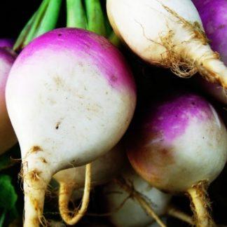 White and purple turnips or radishes.