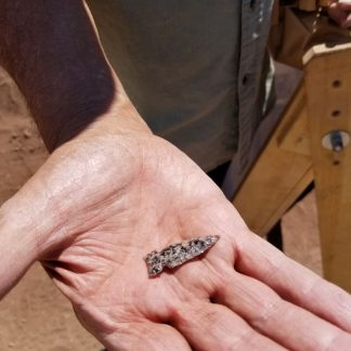 Person's hand holding small stone arrowhead or other tool point.
