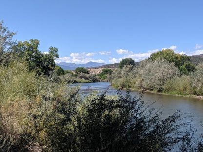 River with dense trees and bushes on both banks. Mountains in background.
