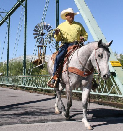 Cowboy on white horse with cowboy hat and lasso. Crossing a bridge with windmill behind it.